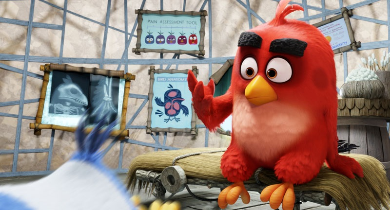 EventGalleryImage_AngryBirds_800i.jpg