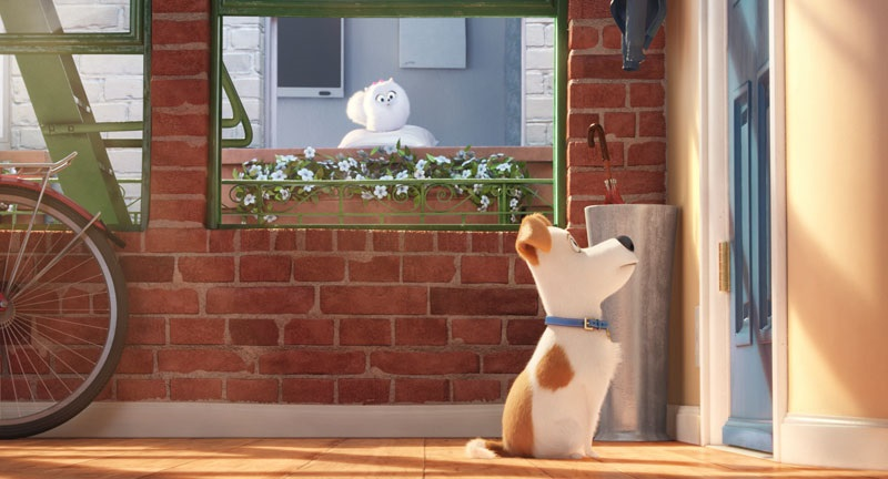 EventGalleryImage_TheSecretLifeOfPets_800e.jpg