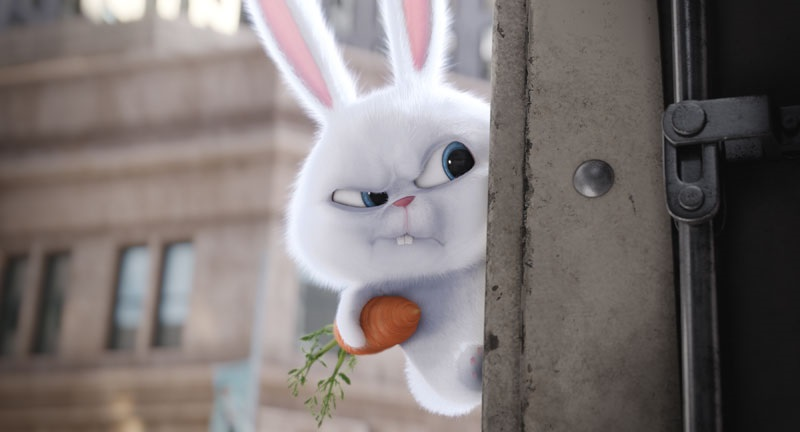EventGalleryImage_TheSecretLifeOfPets_800a.jpg