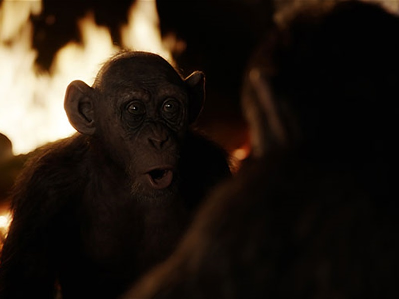 EventGalleryImage_WarForThePlanetOfTheApes_800b.jpg