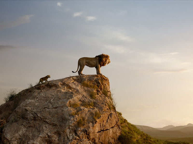 EventGalleryImage_TheLionKing_800c.jpg