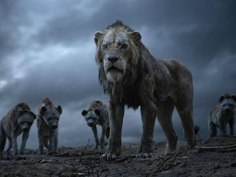 EventGalleryImage_TheLionKing_800f.jpg
